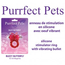 PURRRFECT PETS BUZZY BUTTERFLY MAGENTA